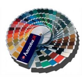 Custom colour painting